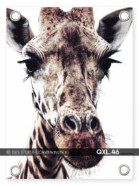 Tuinposter Giraf