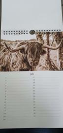 Verjaardagkalender Schotse Hooglander