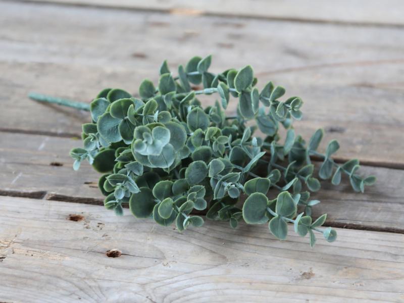 Eucalyptus bosje (kunst)