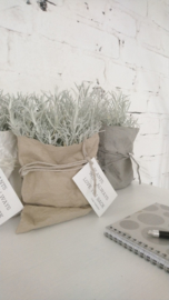 Paper plantbag zand 4 st.