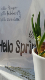 Geursachet Craft wit Hello Spring 6 st.