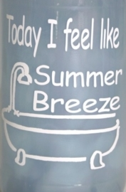 Today I feel like Summer Breeze 2 stuks