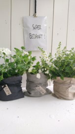 Plantbag small antraciet/zwart 4 st.