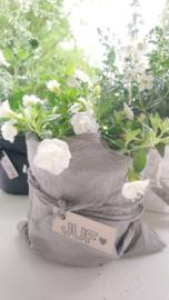Plantbag small grijs  4 st.