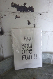 Geursachet Craft wit Hey you are fun ! 6 st.