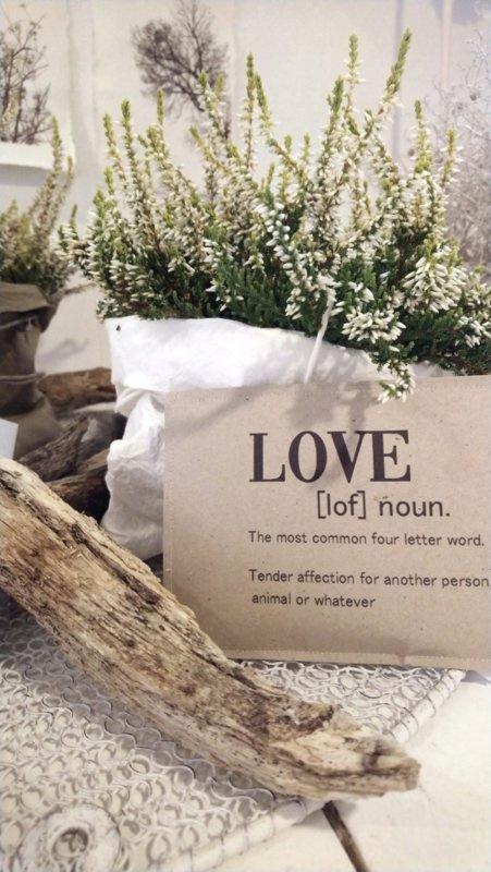 Geursachet A6 LOVE- definition 6 st.