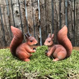 Polyester eekhoorntjes set van 2