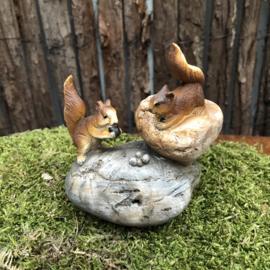 Polyester eekhoorntjes spelen op een steen