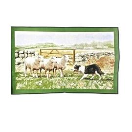 Collie & Sheep tea towel Macneil