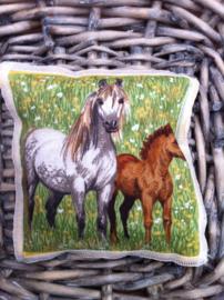 Lavendelsachet paard met veulen