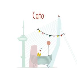 Geboortekaartje 'Wiegje in Rotterdam'