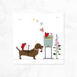 Wenskaart teckel Frits - Volop liefde