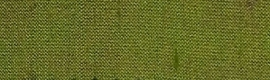 555 - groen-rose changeant