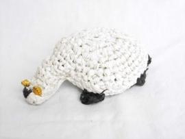 377 - schildpad wit