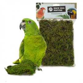 Back Zoo Nature Forest Moss Bird 70 gram