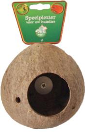 Kokosnoot met schroefdraad.