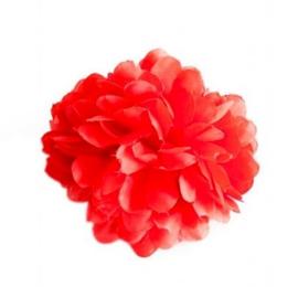 Fleur flamenco rouge