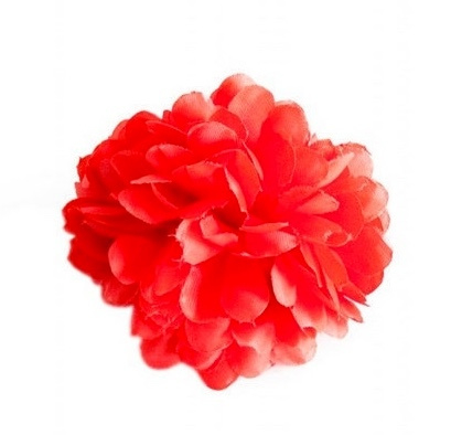 Spanish hair flower red
