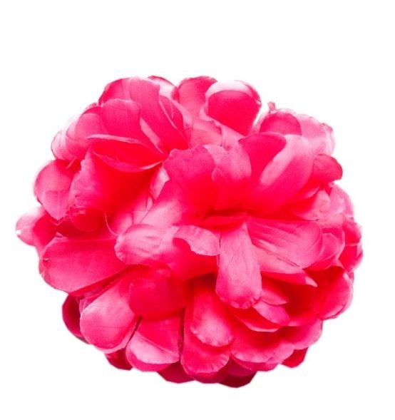 Haarbloem roze