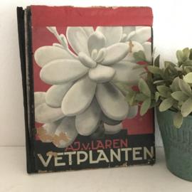 """Vintage boek """"vetplanten""""door A.J. van Laren"""