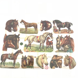 Poezie plaatjes paarden nr. 7378