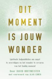 David Hoffmeister - Dit moment is jouw wonder