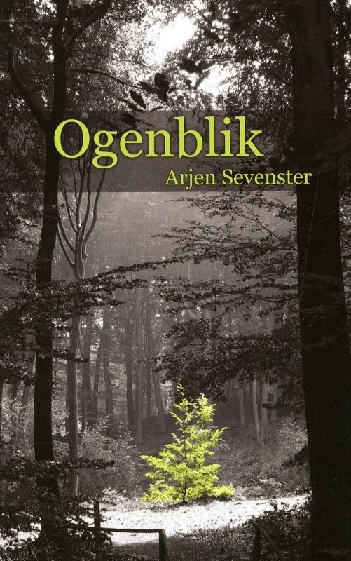 Arjen Sevenster  - Ogenblik