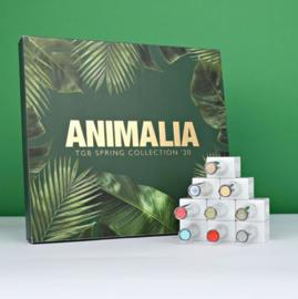 ANIMALIA SPRING COLLECTION 2020