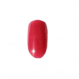 Astonishing Nails Gekleurd Acryl Poeder #409 Affection