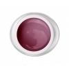 9806 - Pink 5ml
