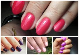 Combi Manicure (groep vanaf 3 cursisten)
