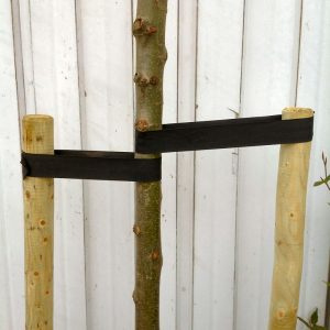 Boompalenset 200cm lengte (2 palen incl. band en nagels)