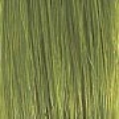Extension kleur acid green