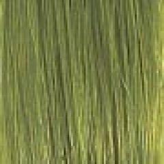Extension kleur acid green