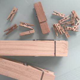 Wasknijper 3 cm (10 stuks)