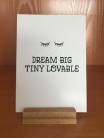 A6 | Dream big tiny lovable