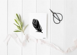 A6   Feather