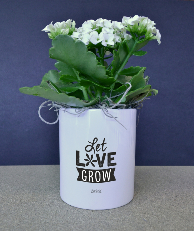 BLOEMPOTJE -  Let love grow