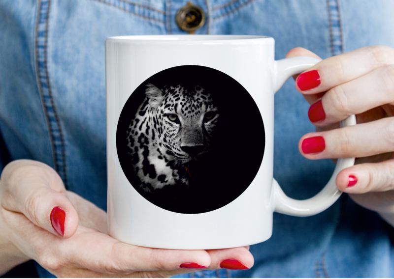 MOK - Cheetah (foto)