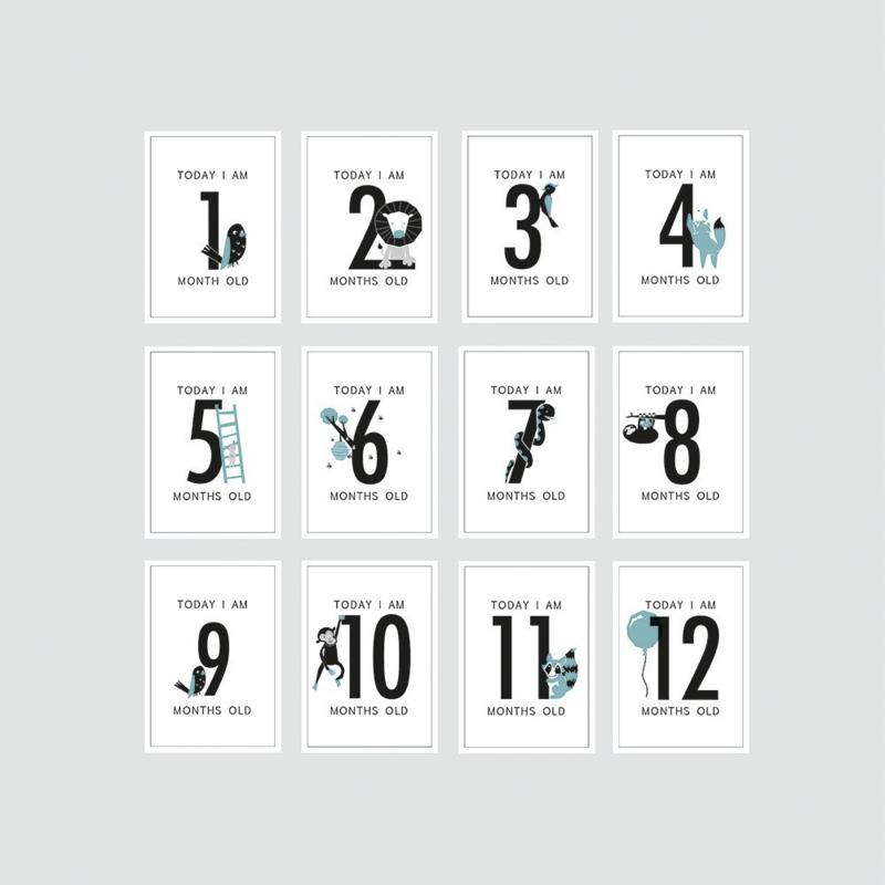HOP - Milestone kaarten jongen