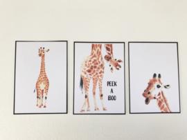 Wanddecoratie | Posters | Darling Prints | Peek a boo | 3 prints