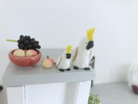 Keuken | eten en drinken | druiven