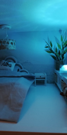 Led lamp incl afstandsbediening