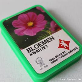 bloemen kwartet - Eldorado
