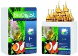 BIODIGEST - 6 Ampullen