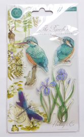 Clear Stamp Craft Consortium - Kingfisher