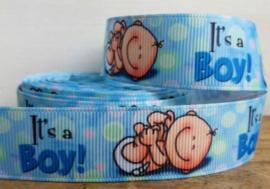 Lint - It's a Boy!
