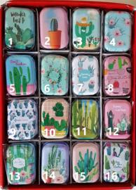 Blikjes - Cactus