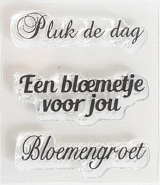 Clear Stamp - Pluk de dag