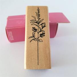 Vintage houten stempel - Botanisch gras 3